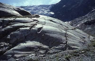 louis agassiz geologe